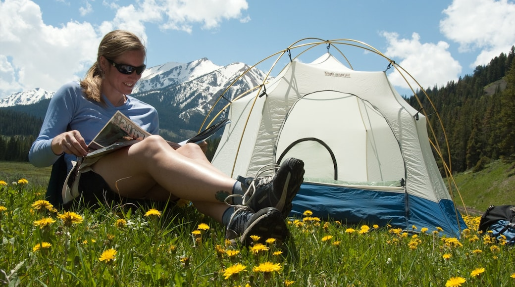 Big Sky Resort which includes flowers, tranquil scenes and camping