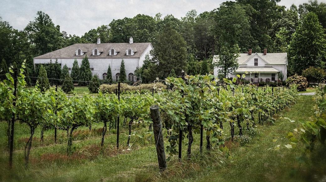 Greensboro featuring farmland and a house