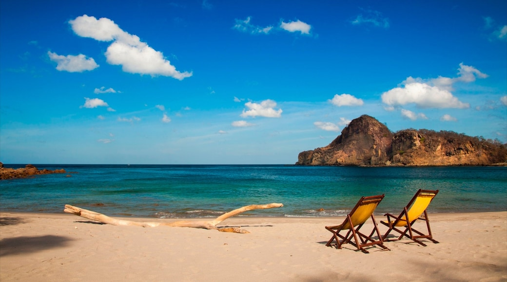 Nicaragua which includes tropical scenes, rugged coastline and a sandy beach