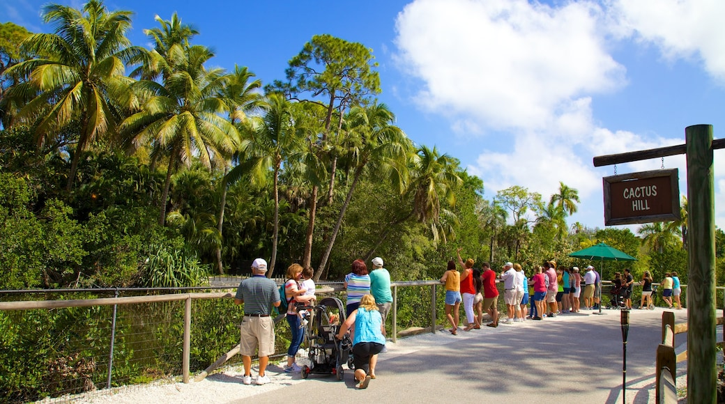 Naples Zoo at Caribbean Gardens featuring views, signage and zoo animals