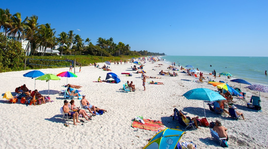 Naples Pier showing a beach and landscape views as well as a large group of people