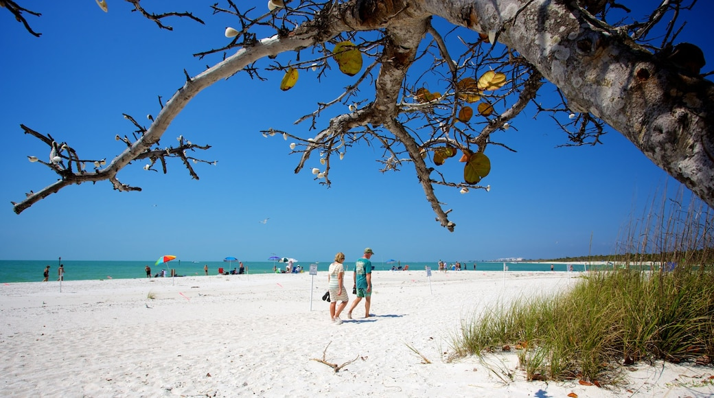 Delnor-Wiggins Pass State Park which includes a sandy beach as well as a couple