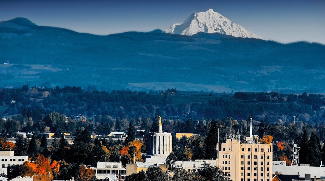 Salem showing a city, mountains and skyline