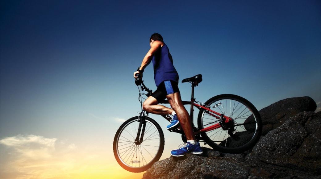 Ontario showing mountain biking as well as an individual male