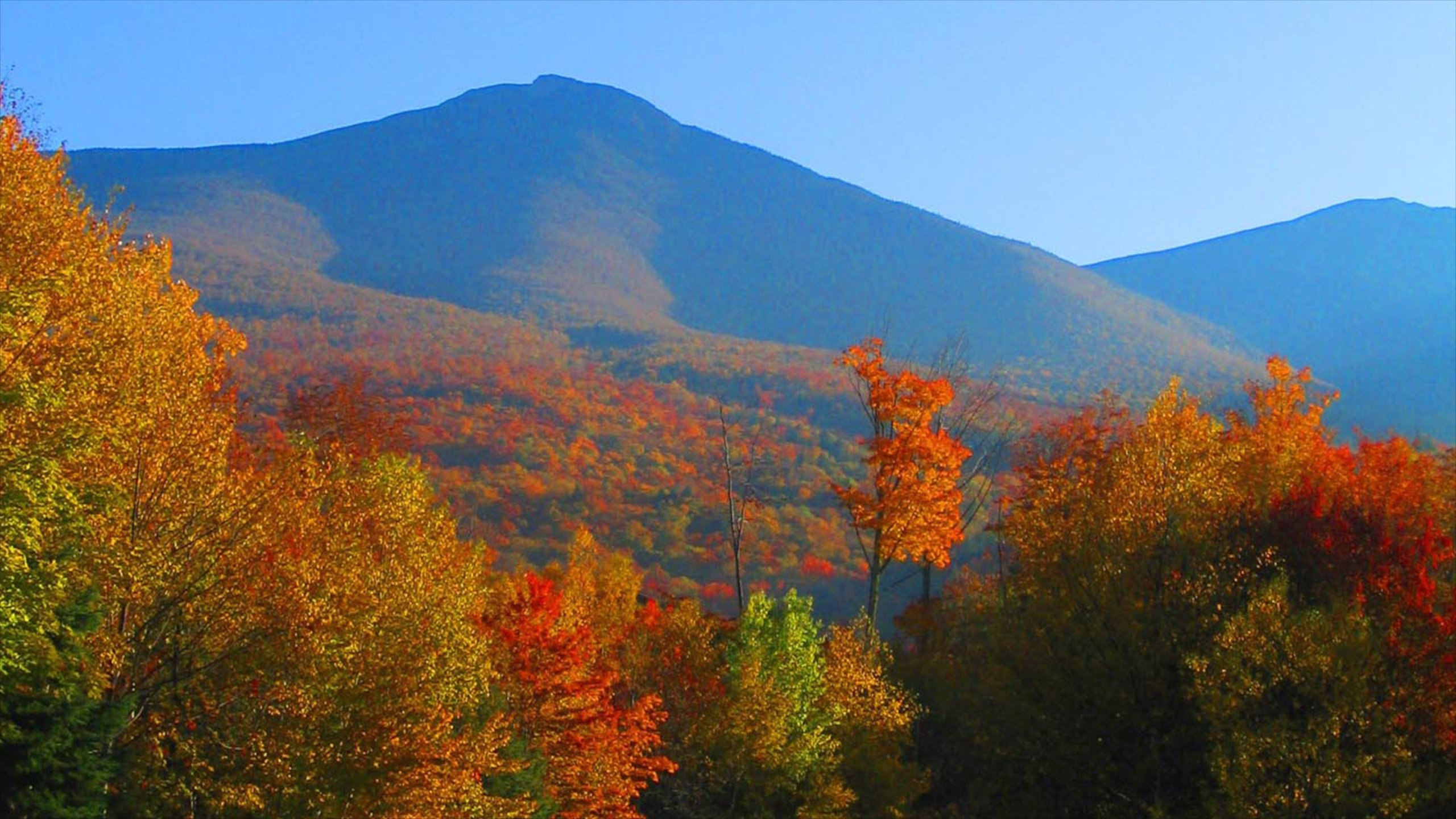 The 10 Best Hotels in White Mountains New Hampshire from