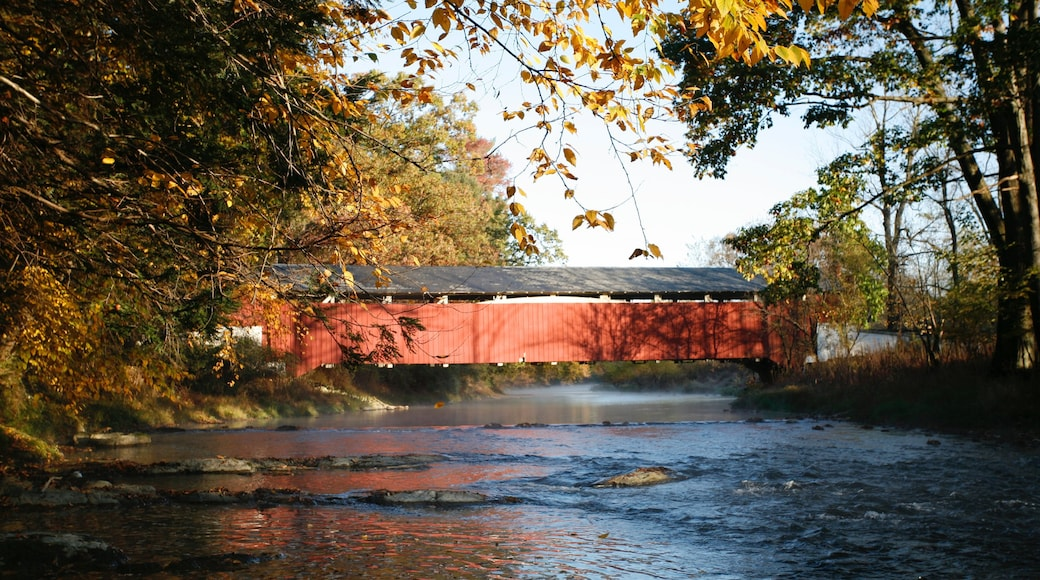 Allentown que inclui cenas tranquilas, uma ponte e um rio ou córrego