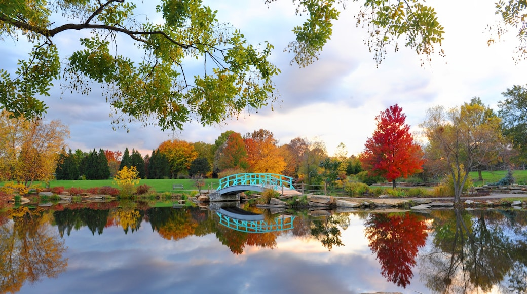 Dayton featuring fall colors, a bridge and a lake or waterhole