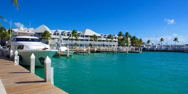 西嶼 设有 綜覽海岸風景, 海邊城市 和 小港灣