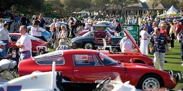 Amelia Island toont een festival en ook een grote groep mensen