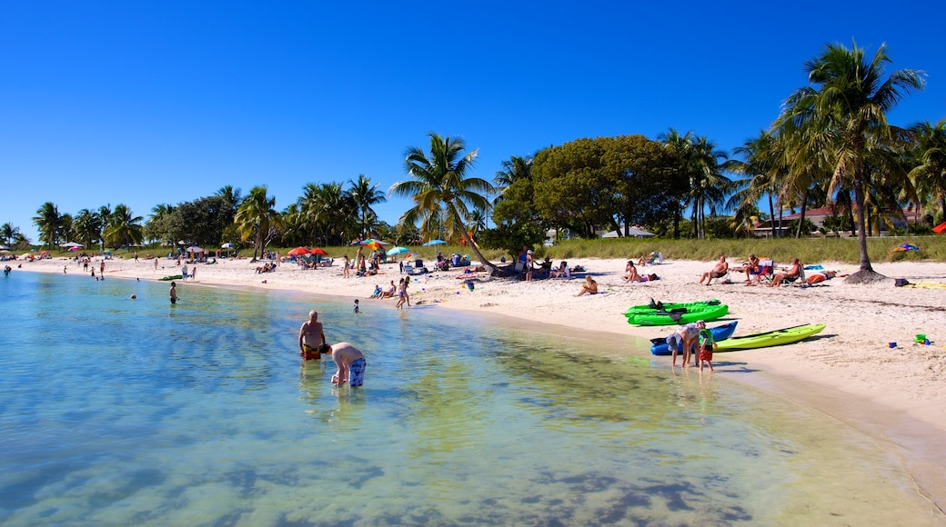 Marathon featuring tropical scenes, a sandy beach and swimming