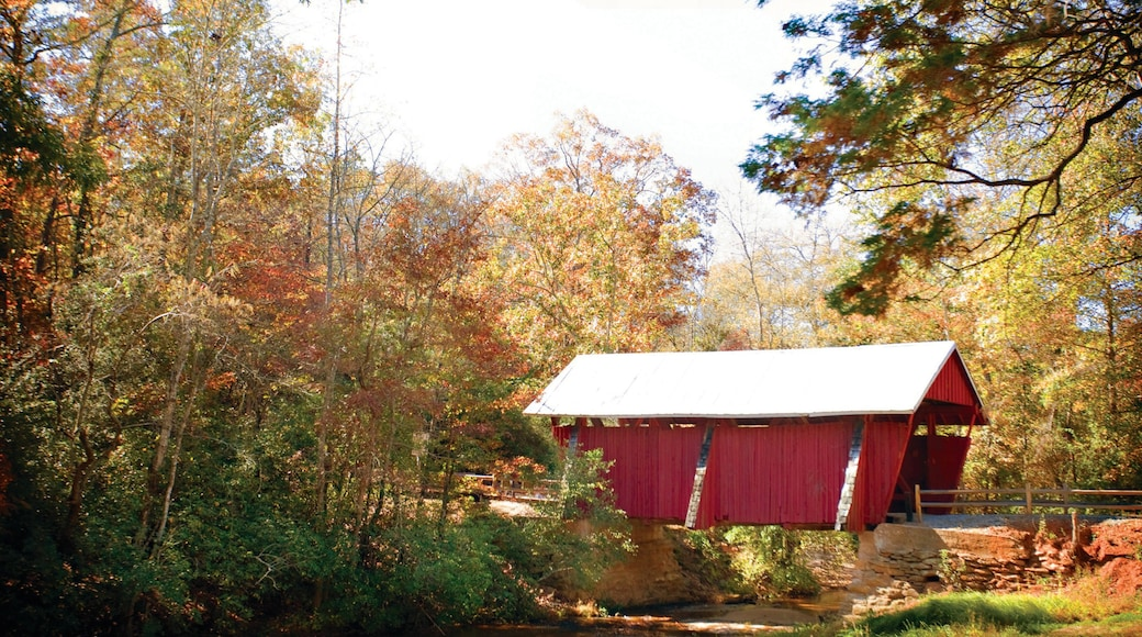 Greenville featuring a bridge and autumn leaves