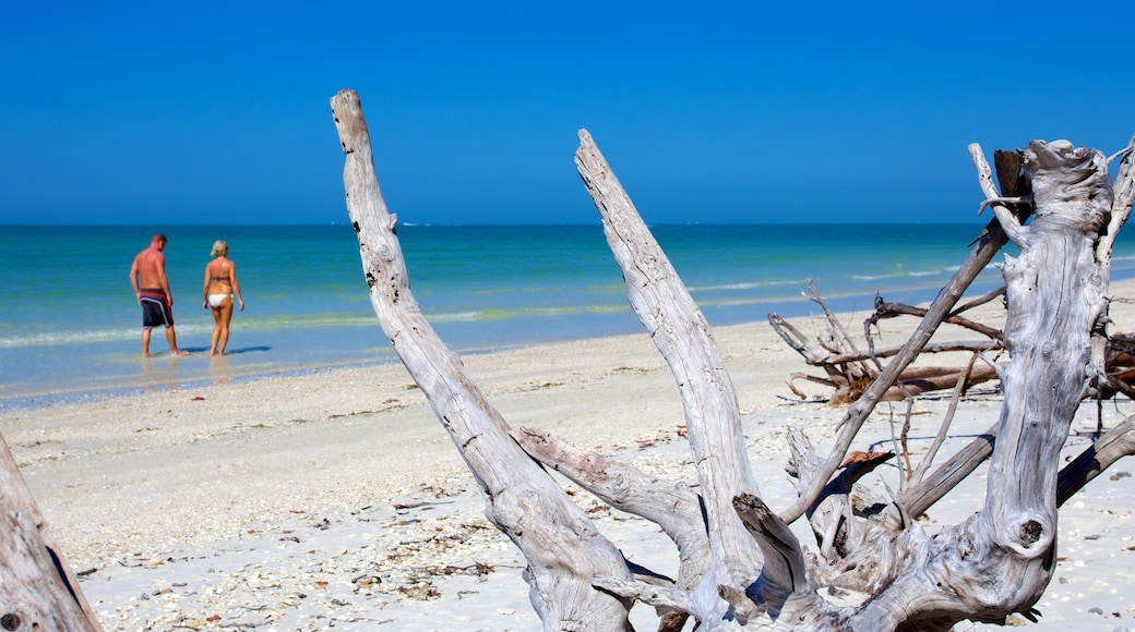 Barefoot Beach featuring a sandy beach as well as a couple
