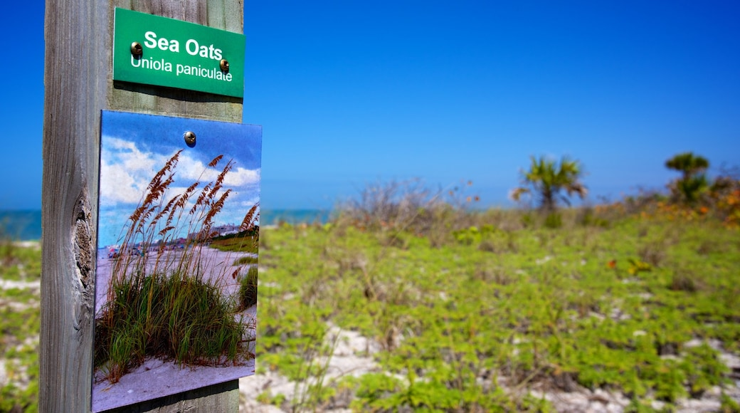 Barefoot Beach showing signage