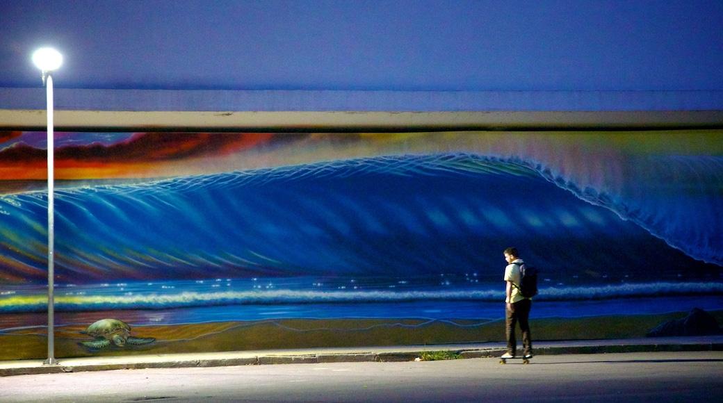 Parque de Ibirapuera que incluye arte al aire libre y escenas de noche y también un hombre