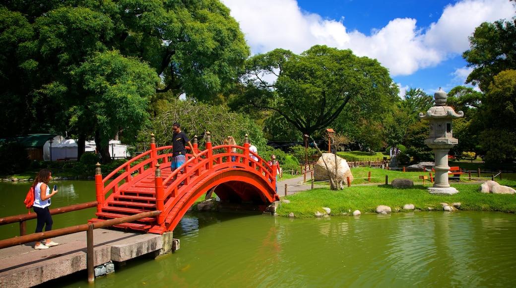 Giardini giapponesi caratteristiche di laghetto e giardino