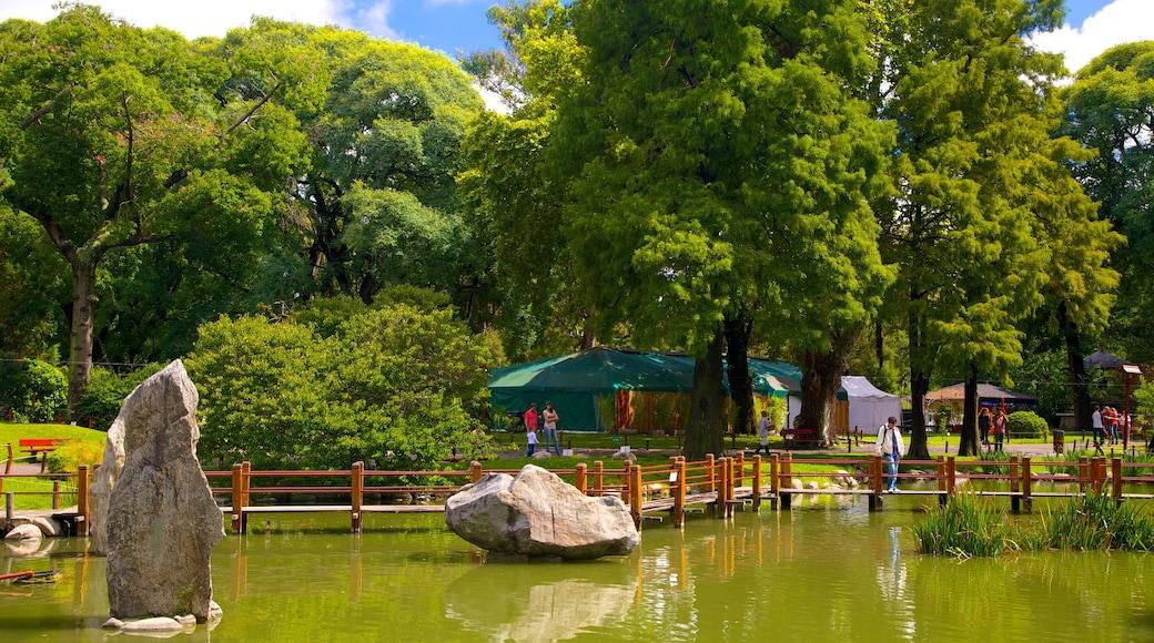 Giardini giapponesi mostrando laghetto e parco