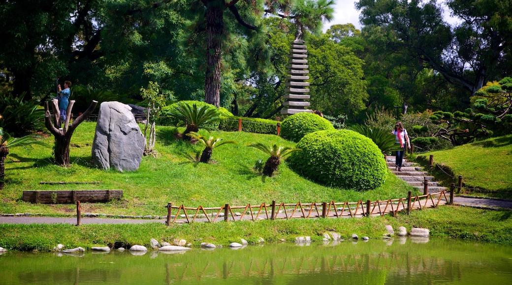 Giardini giapponesi che include laghetto e giardino