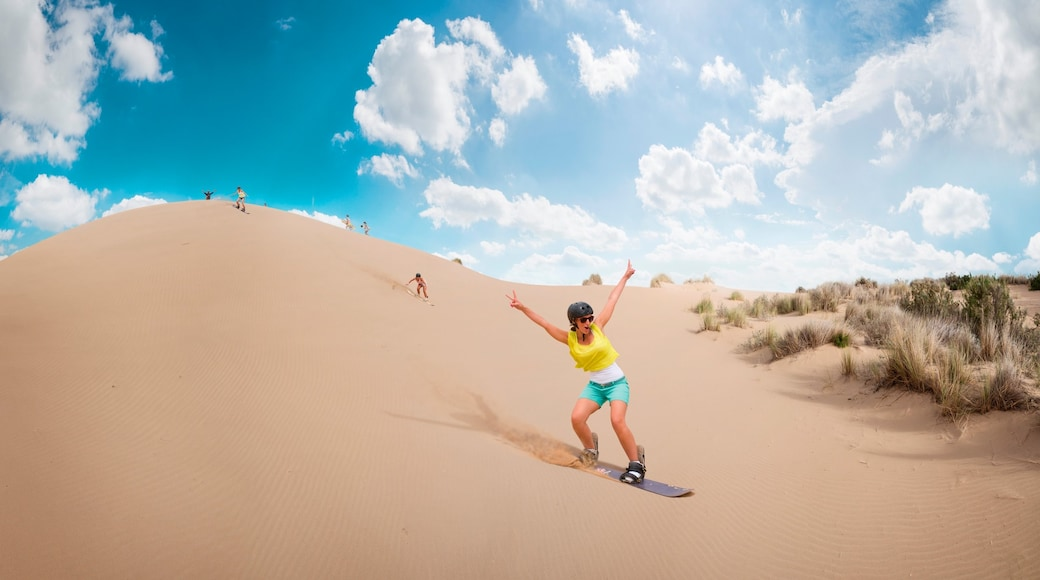 約翰尼斯堡 呈现出 沙漠風景