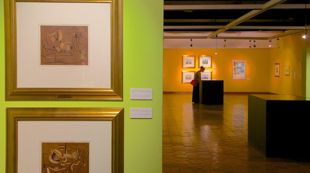 Municipal Museum of Modern Art showing interior views and art