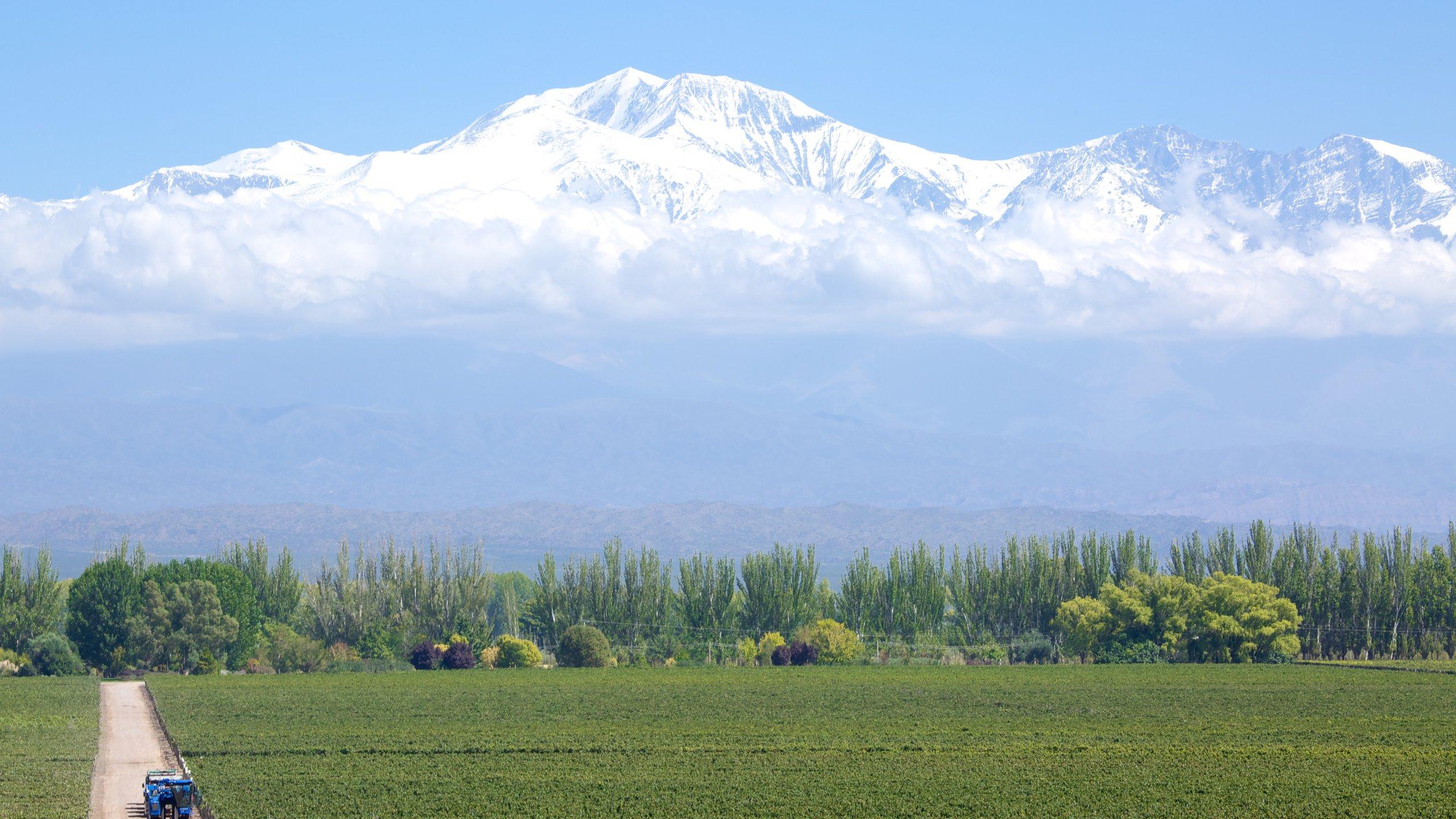 Ugarteche, Mendoza (province), Argentine