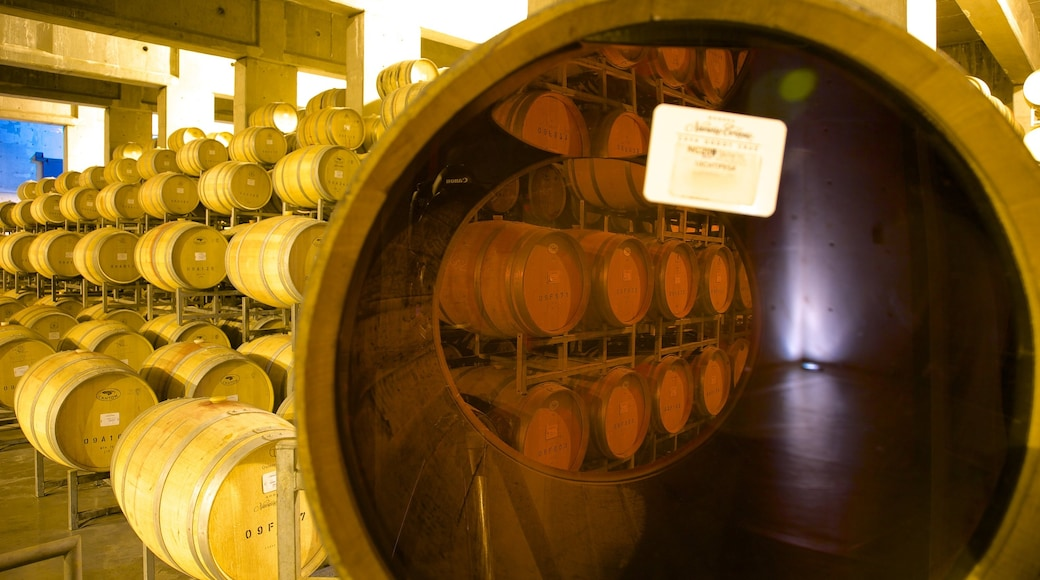 Navarro Correas Winery which includes interior views