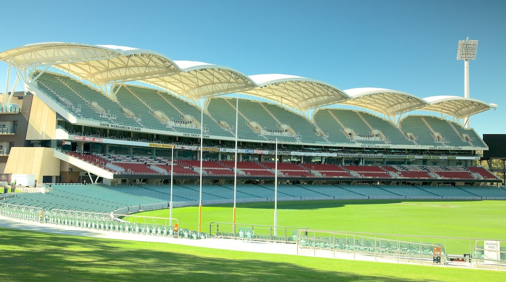 Adelaide Oval featuring modern architecture