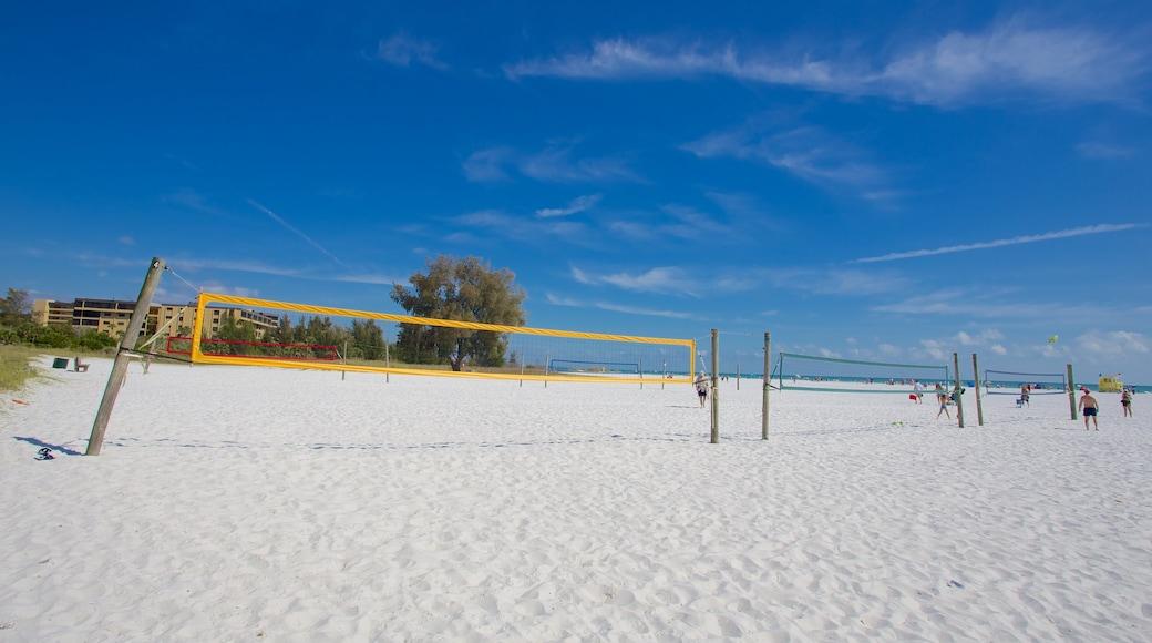 Siesta Key Public Beach caratteristiche di spiaggia sabbiosa