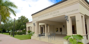 South Florida Museum featuring signage