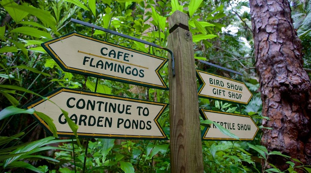 Sarasota Jungle Gardens featuring signage and a garden