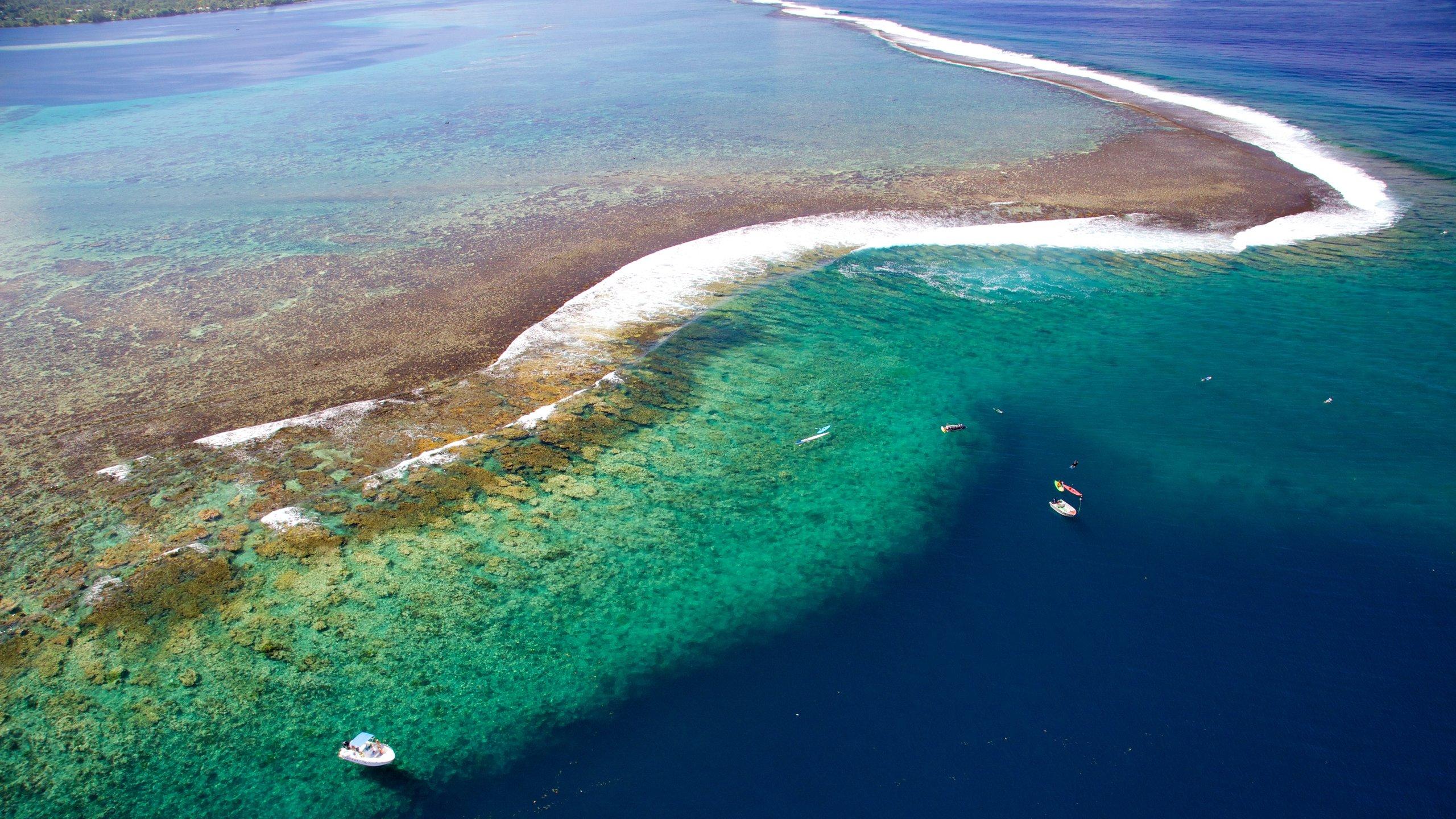 Öarna över vinden, Franska polynesien