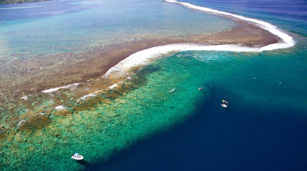 Tahiti featuring coral, general coastal views and island views
