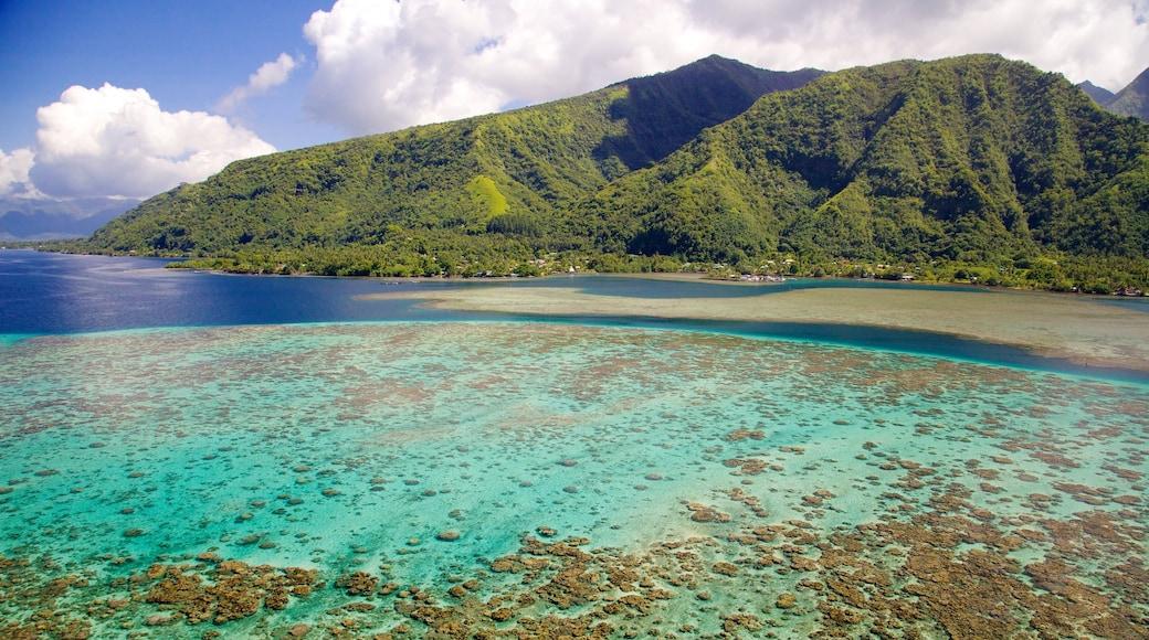 Tahití mostrando arrecifes coloridos, montañas y vistas generales de la costa