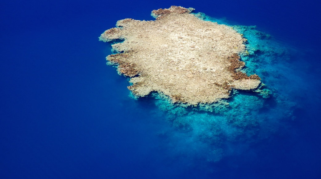 Tahiti showing coral and island images