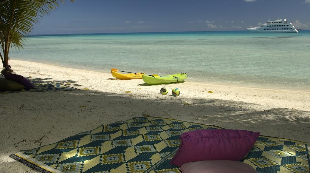 Atoll de Rangiroa qui includes plage et scènes tropicales