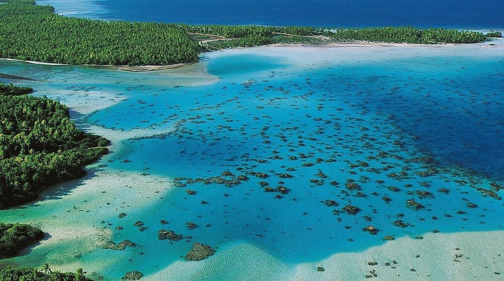 Atoll de Rangiroa mettant en vedette vues littorales