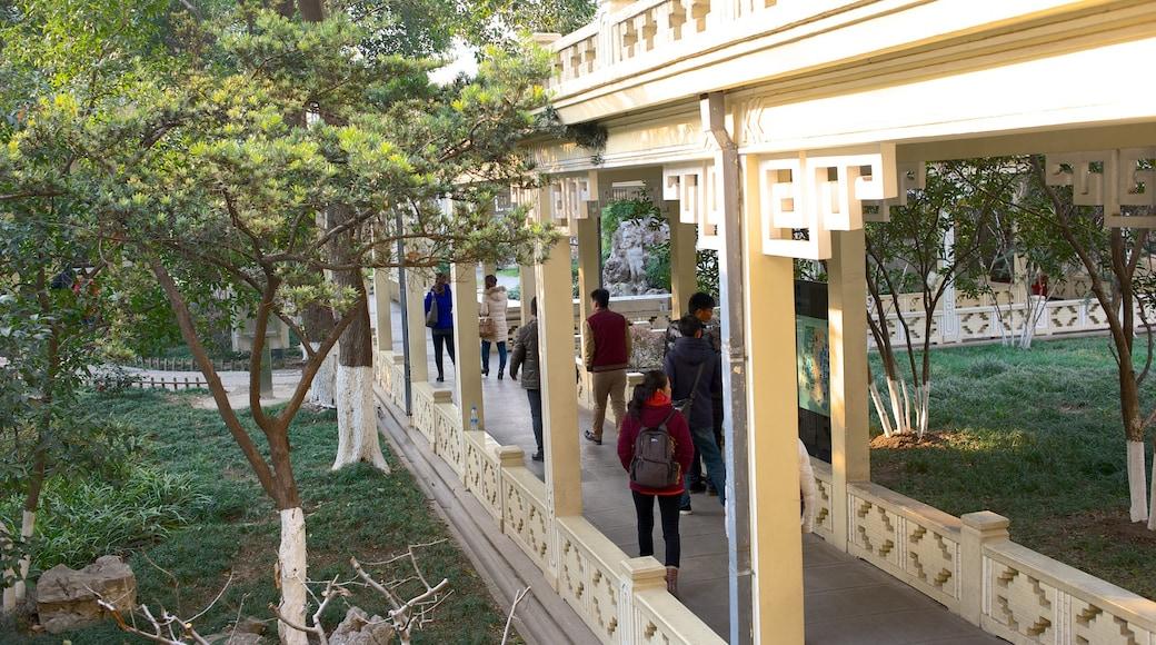 南京總統府 设有 歷史建築