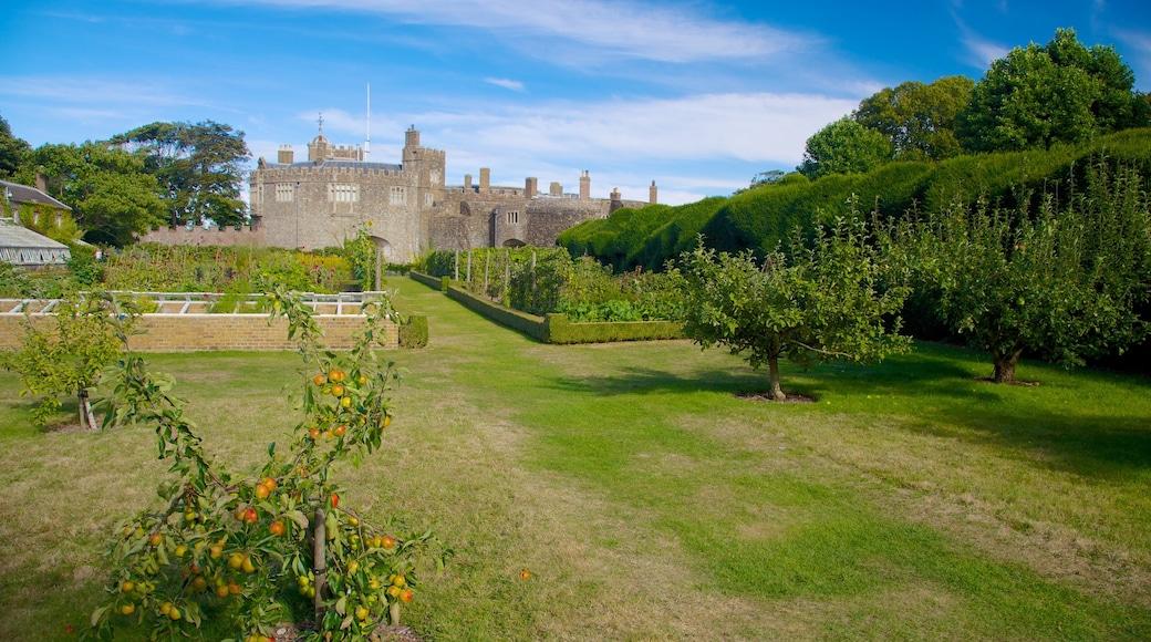 Castillo y jardines de Walmer que incluye un jardín