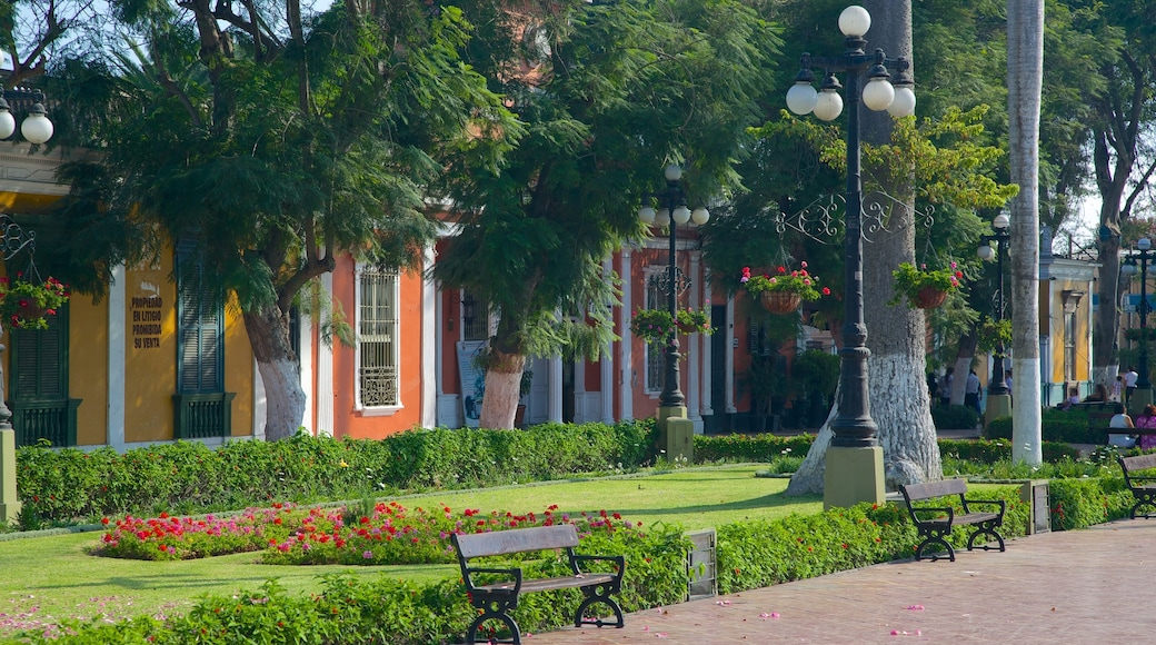 Barranco que inclui um jardim e cenas de rua