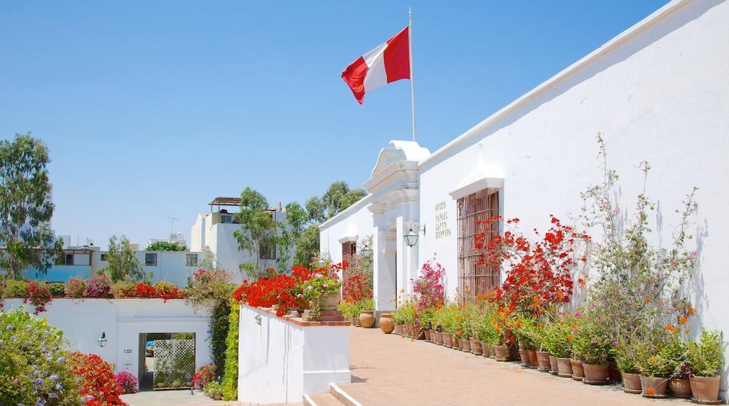 Museo Larco mostrando un jardín y flores