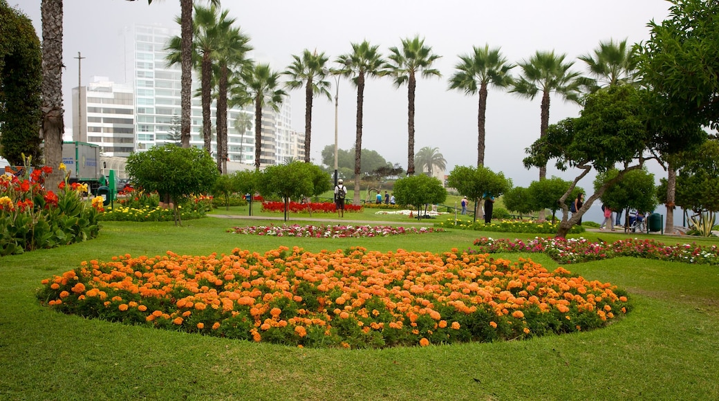 Parque del Amor featuring flowers and a park