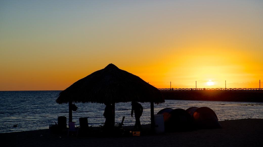 Playa Miramar showing a sunset, tropical scenes and general coastal views