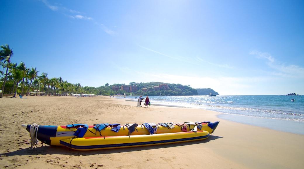 Quieta Beach showing landscape views, tropical scenes and a beach