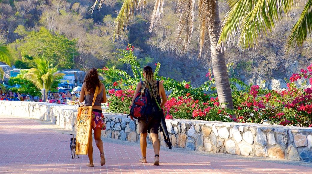 Playa La Entrega ofreciendo senderismo o caminata y escenas tropicales y también un pequeño grupo de personas
