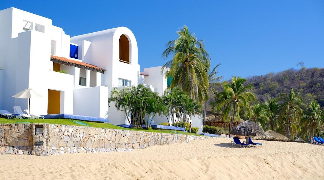 Playa Zaachila caracterizando um hotel, cenas tropicais e uma praia de areia