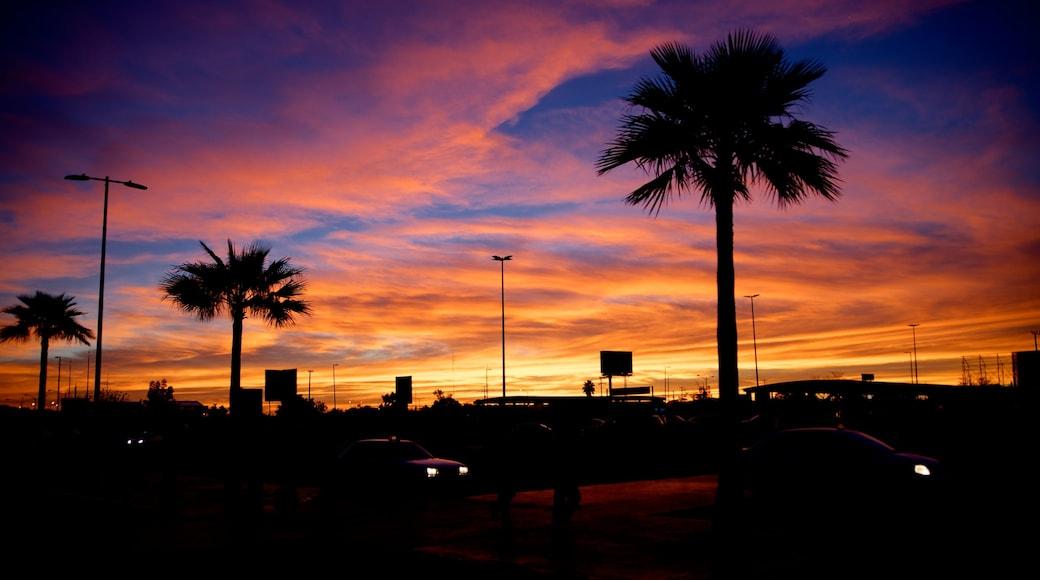 Hermosillo mit einem Sonnenuntergang und tropische Szenerien
