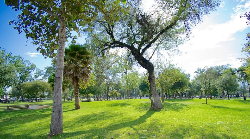 Alameda mostrando un jardín
