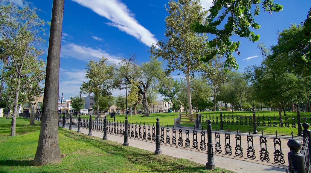 Alameda que incluye un parque