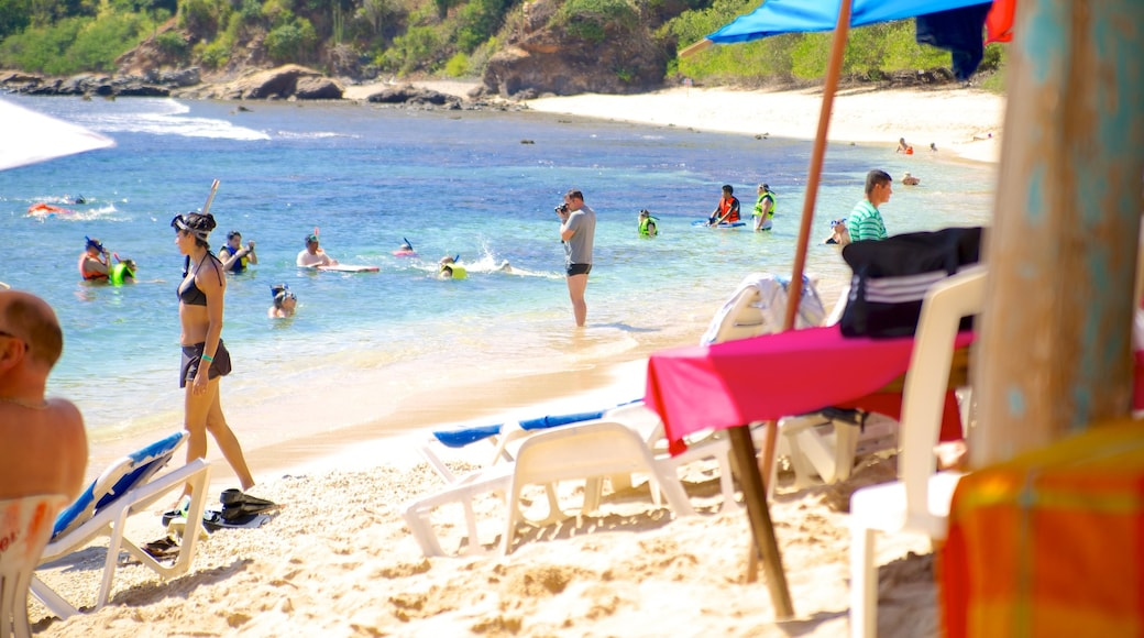 Ixtapa Island showing tropical scenes, a beach and swimming
