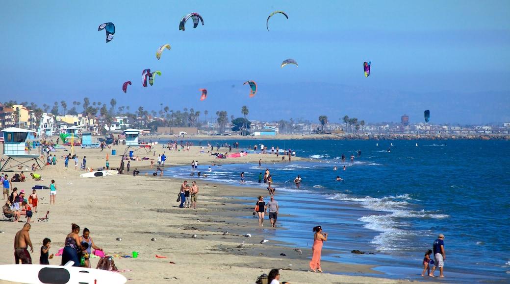Long Beach montrant plage, vues littorales et kite surf