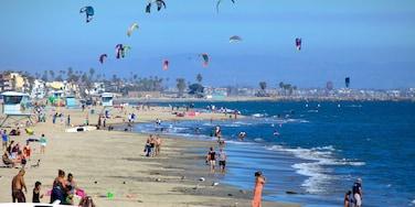 長灘 呈现出 綜覽海岸風景, 沙灘 和 風箏滑浪